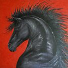 Friesian Fire by louisegreen