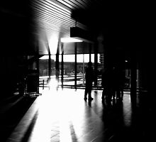 Lines, Lines, Light - B&W by Hans Bax