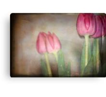 Tulip in Retro Canvas Print
