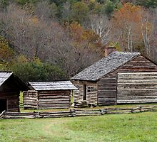 The Old Homestead by Gary L   Suddath