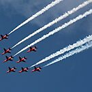 The Red Arrows 9 by Tony Steel