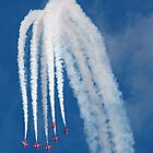 The Red Arrows by Tony Steel