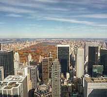 Central Park fromTop of the Rock by acolleau