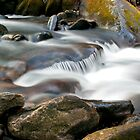 Roaring Fork Motor Nature Trail Cascade by Sam Warner