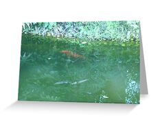 Huge Orange Fish Swimming by the Shore Greeting Card