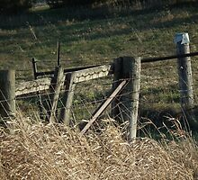 Fence and Gate to Rye Field by Deb Fedeler