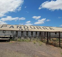 Historic Woolshed at 'Nutbush Retreat' Pundarra sheep station. Pt. Augusta. by Rita Blom