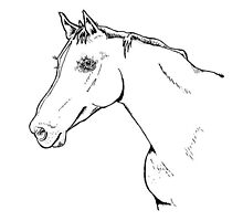 Horseflesh by AOConnor