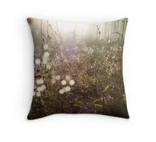 Sunkissed Autumn Colors Throw Pillow
