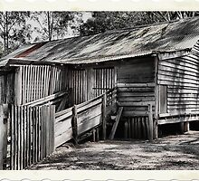 The Shearing Shed - Australiana Pioneer Village Wilberforce NSW Australia by Bev Woodman