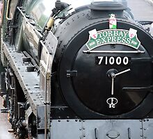 Duke of Gloucester - Loco 71000 by Tony Steel