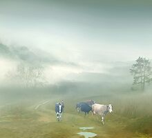 Villager's Morning by Igor Zenin