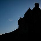 Dark Castle by dgscotland