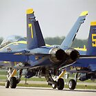 Blue Angels F/A-18 by Anthony Woolley