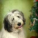""" I Hope There Really Is A Santa Paws . . ."" by Renee Blake"