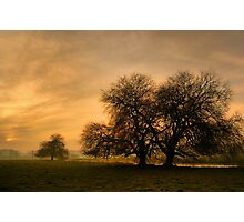 A Winters Tale Photographic Print