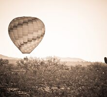 Hot Air Balloon On the Arizona Sonoran Desert In BW  by Bo Insogna
