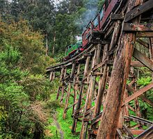 Puffing Billy Crosses the Trestle Bridge  by NeilAlderney