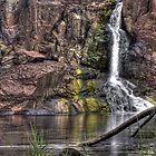 Nigretta Falls by Sarah Donoghue