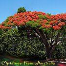 Merry Christmas from Australia by Elisabeth Dubois