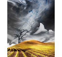 One Tree Hill by Ethan Kemp