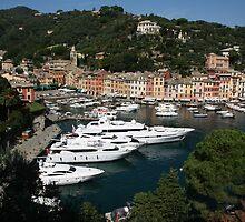 View of Portofino by Rob Chiarolli