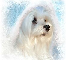Snowdrop the Eskimo ! by Morag Bates