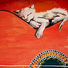 cat sleep on guittar by niccolae