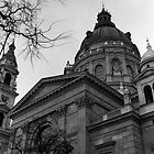 St. Stephen's Basilica, Budapest by Rodney Johnson