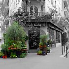 A Flower Shop in Paris by Tom  Reynen