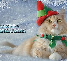 Toby's Christmas by Michael  Gunterman