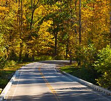Autumn Drive by Henry Plumley