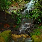 Clarinda Falls, Blue Mountains by Damian Gobbo