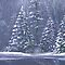 &quot;Winter trees&quot; Christmas fine art seasonal card by Sarah Trett