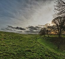 Afternoon in Avebury by Pete Latham