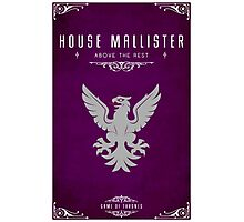 House Mallister Photographic Print