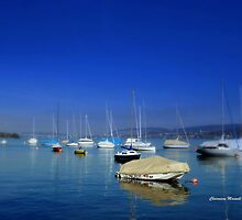 The lake of Zurich by Charmiene Maxwell-batten