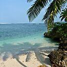 Palm shadows on Figi by Linda Sparks
