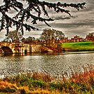 Blenheim Palace by Asif Patel