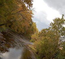 River Road 19 by Randen Weinholtz