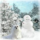 Snowdrop & The Snowman by Morag Bates