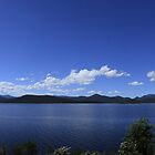 Lake Burbury,Tasmania, Panorama by Noel Elliot