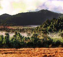 Vista views at Josephine Falls - Babinda QLD by Jennifer Craker