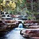 Dales Gorge(cal) by Sheldon Pettit