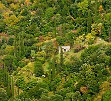 Lonely home, Mainalo mountain range, Arcadia, Peloponnese by Konstantinos Arvanitopoulos