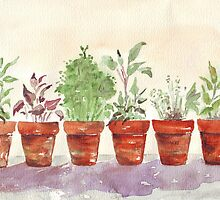 Herbs - Inside or outside? by Maree  Clarkson