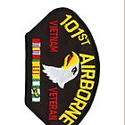 Vietnam Vet - 101st Airborne - iPhone Case by Buckwhite