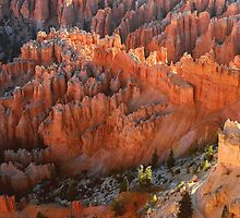 Sunrise From Bryce Point by Stephen Vecchiotti