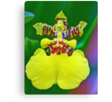 Whatkinda Orchid (Dancing Lady) Canvas Print