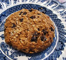 Crunchy Cookie - Tasty Treat by kathrynsgallery